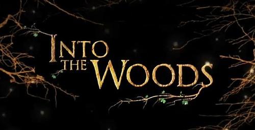 [Disney] Into the Woods - Promenons-Nous dans les Bois (28 janvier 2015) Tumblr10
