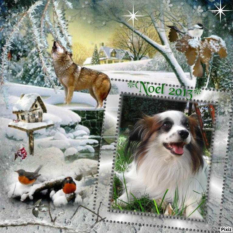 Bon Noël Eliott10