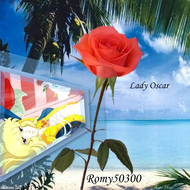 Montages de Lady Oscar 1d3vz305