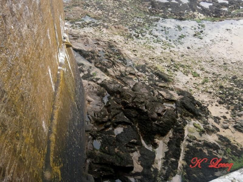 Notre sortie à Saint Malo - 15 Mars 2014 P3150072