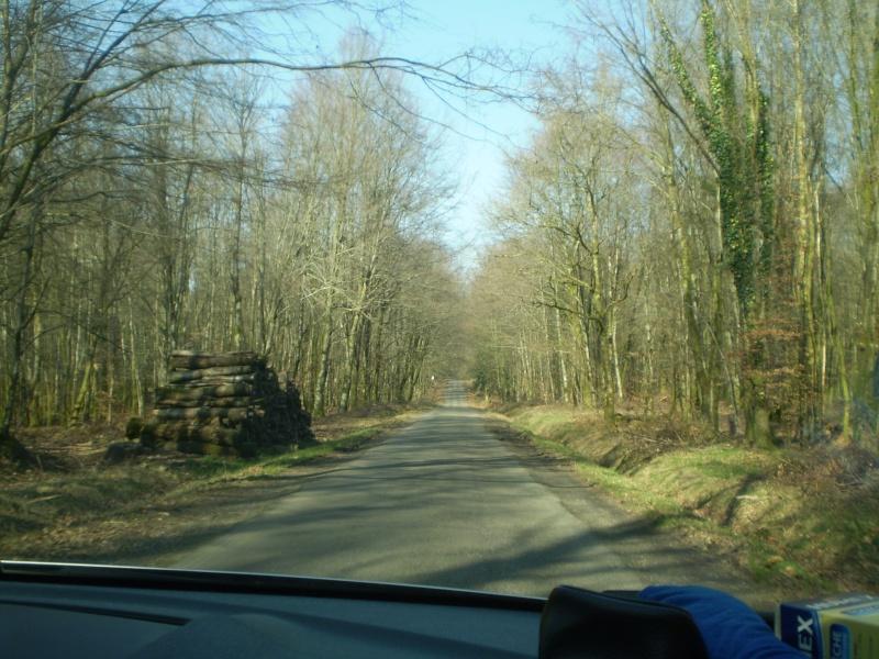 Notre sortie à la forêt d'Andaines dans le département de l'Orne 4 mars 2012 Sortie73
