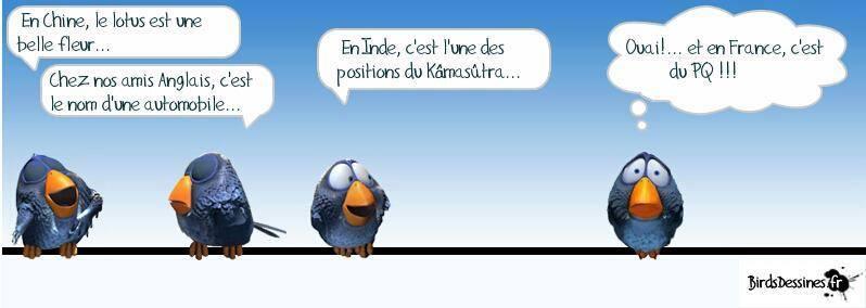 Humour en image du Forum Passion-Harley  ... - Page 6 16897910