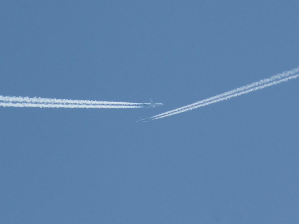 Au-dessus de la maison , proche Nice Img_3711