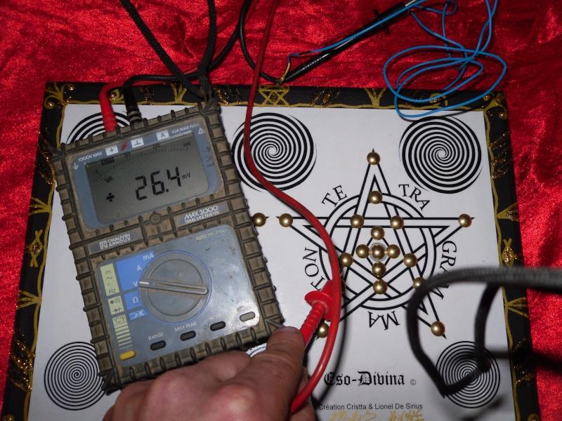 La planche P.R.E.O.N Eso-Divina --> Partage de nos infos et de nos expériences Sam_0011