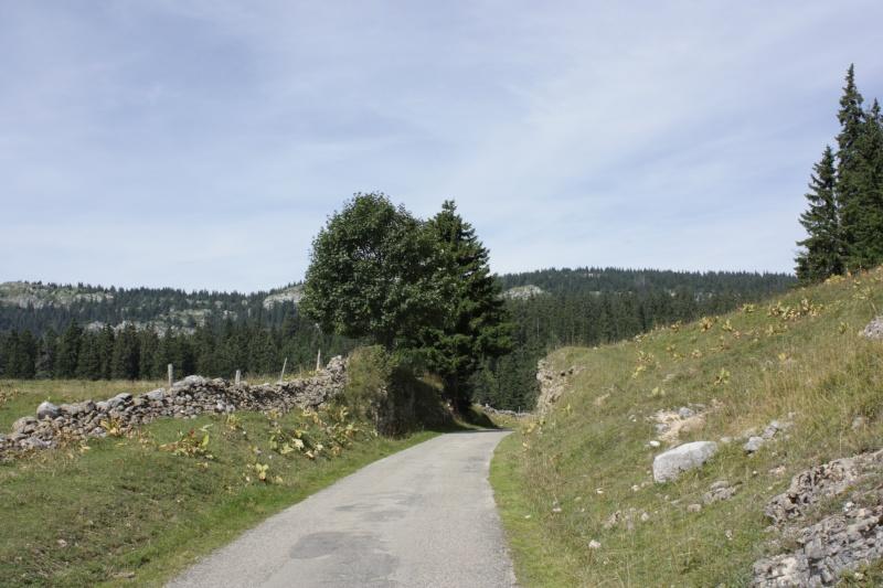 Si vous avez des questions pour une balade en Suisse........ Img_0510