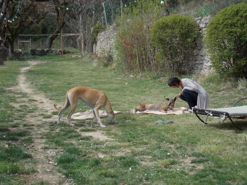 après-midi bonheur en Vaucluse  138710