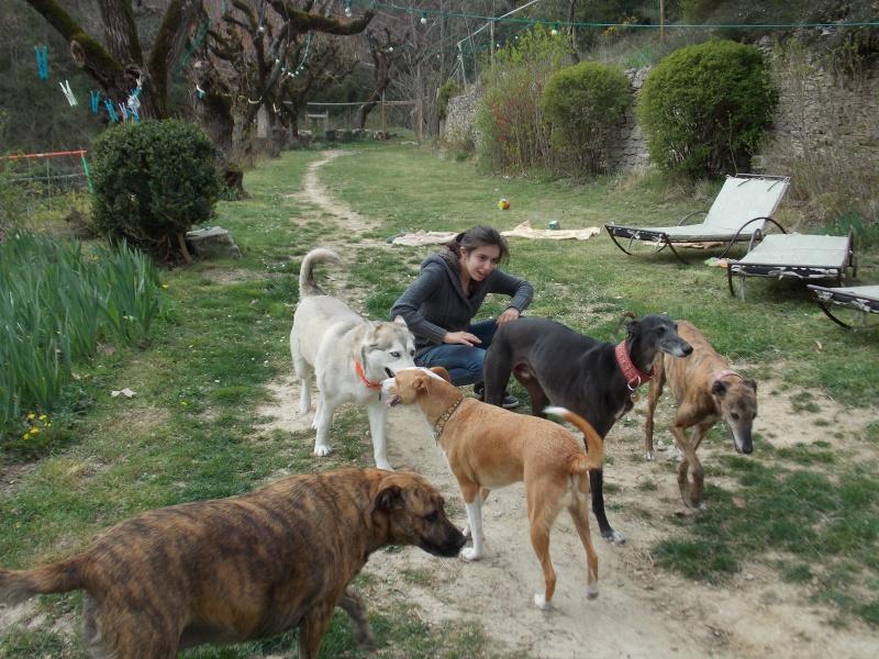 après-midi bonheur en Vaucluse  139410
