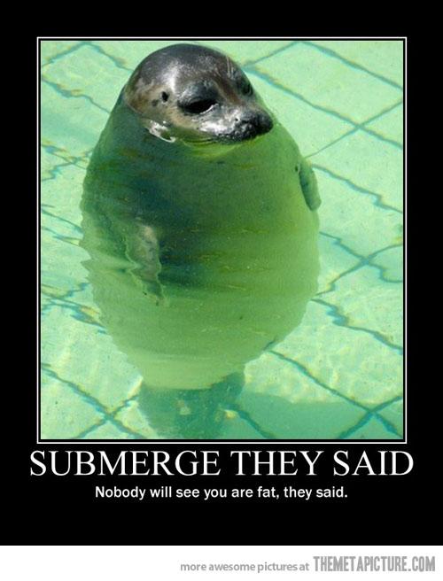 lol-pics :) Funny-26