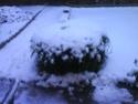 concours 12 paysages féériques d'hiver Dsc01911