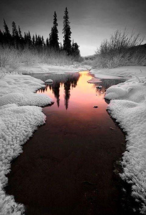 36 - Les reflets dans les flaques d'eau........ photos reçues !!! - Page 2 Tumblr10