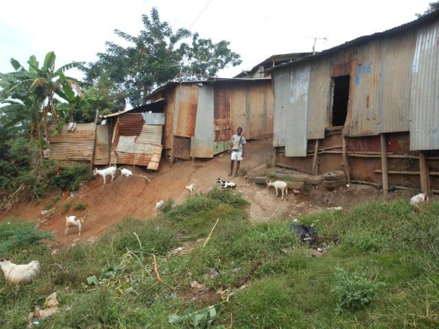 Photos séjour à Mayotte Dscn1810