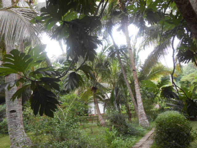 Photos séjour à Mayotte Dscn3016