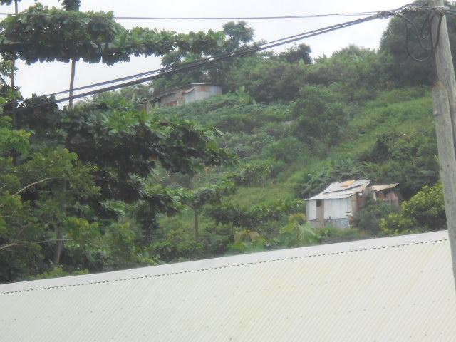 Photos séjour à Mayotte - Page 2 Dscn3112