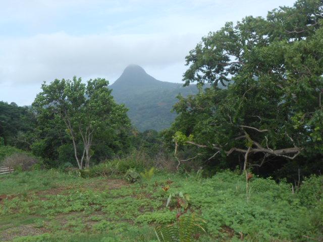 Photos séjour à Mayotte - Page 2 Dscn3117