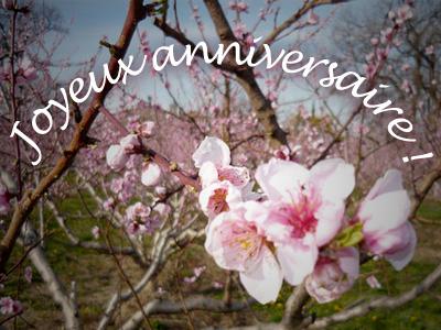 Joyeux Anniversaire Tina22 Annive10