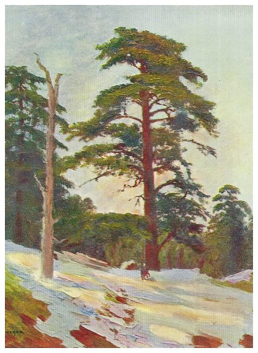 Jean et Jérôme THARAUD, LE MAROC - 1923 - - Page 2 Bscan_38