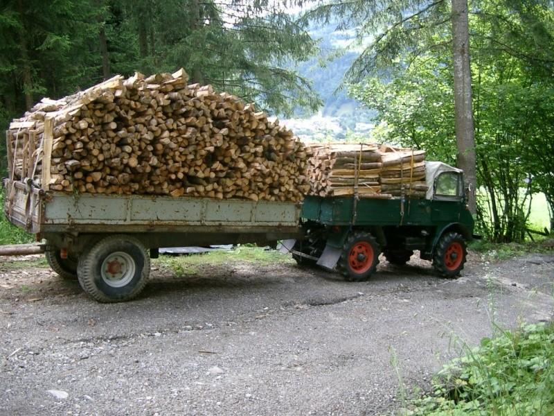 unimog mb-trac wf-trac pour utilisation forestière dans le monde - Page 30 Holzfu10