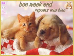 """""""Bonjour / Bonsoir"""" !!! - Page 6 We10"""