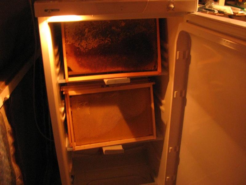 Rangement stockage  Img_6942