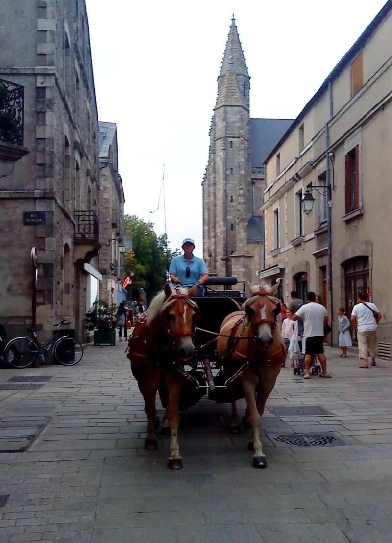 Guyonne, la passion du cheval... avec ses blonds ! Dsc02810