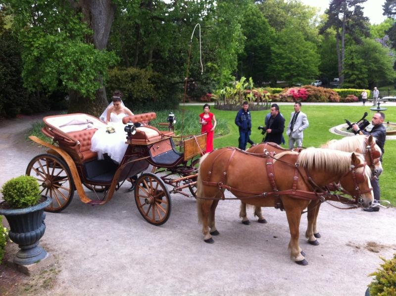 Guyonne, la passion du cheval... avec ses blonds ! Img_0510