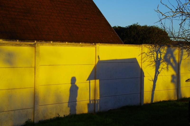 jeux d'ombres Imgp4511