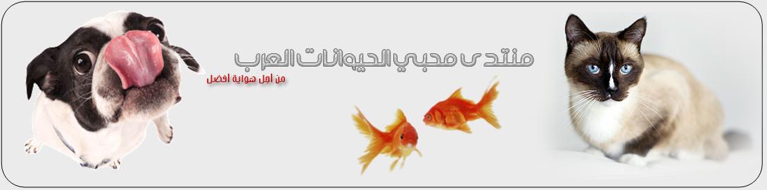 منتدى محبي الحيوانات العرب