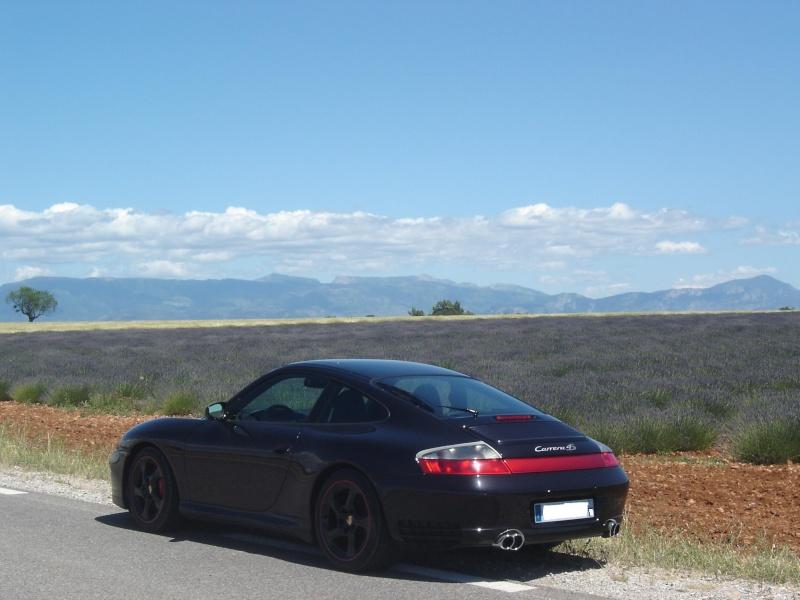 Noire et violet Dsc02210