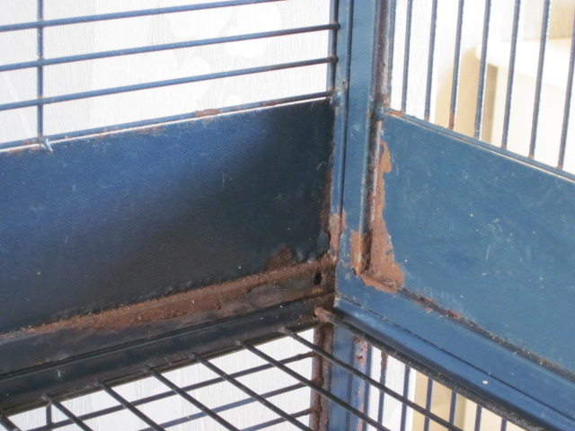 recherche cage savic royal double Img_1711