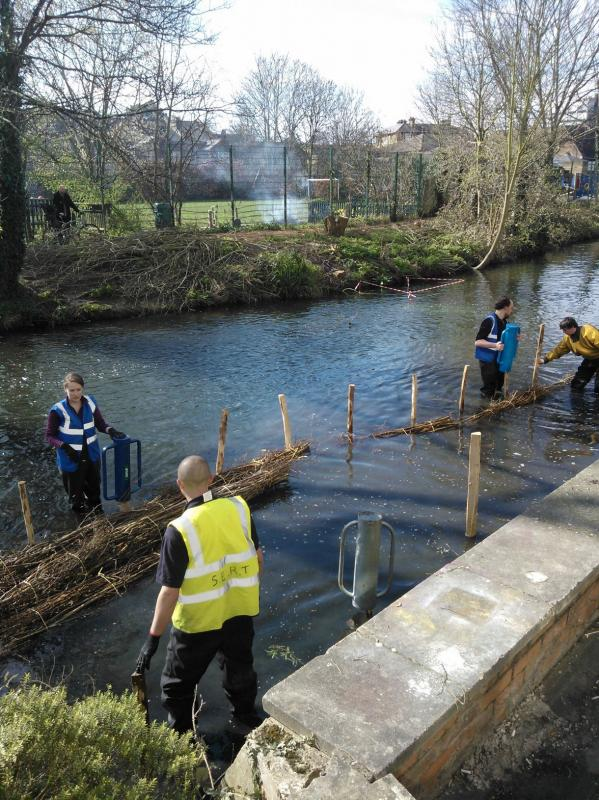 Hogsmill River Habitat Works/Wandle Trust- Volunteers Wp_00018