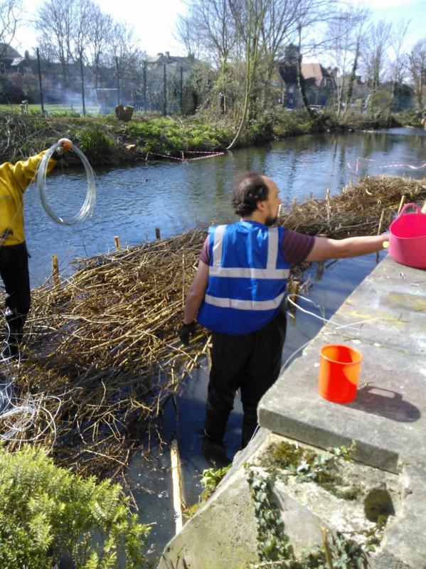 Hogsmill River Habitat Works/Wandle Trust- Volunteers Wp_00020