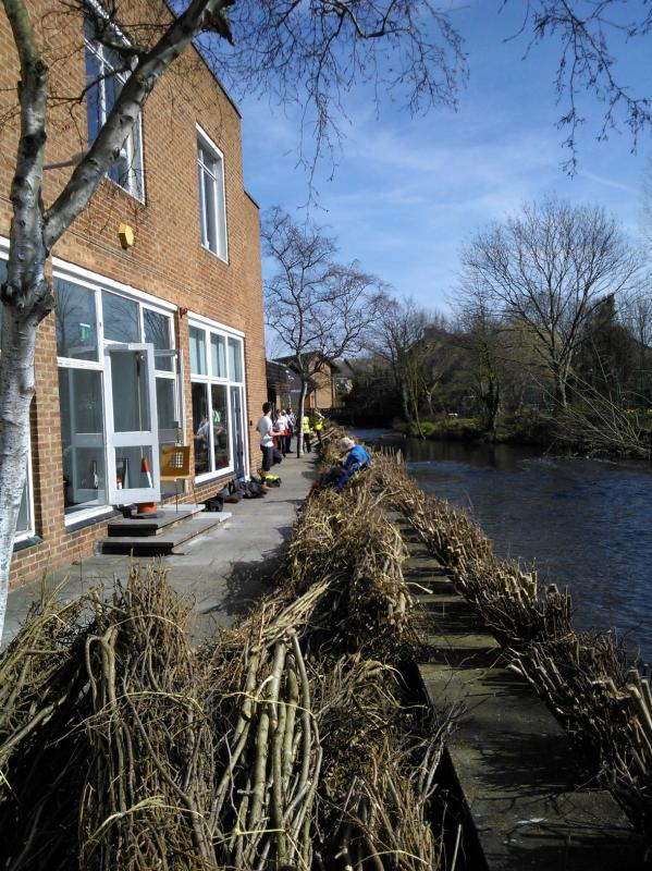 Hogsmill River Habitat Works/Wandle Trust- Volunteers Wp_00021