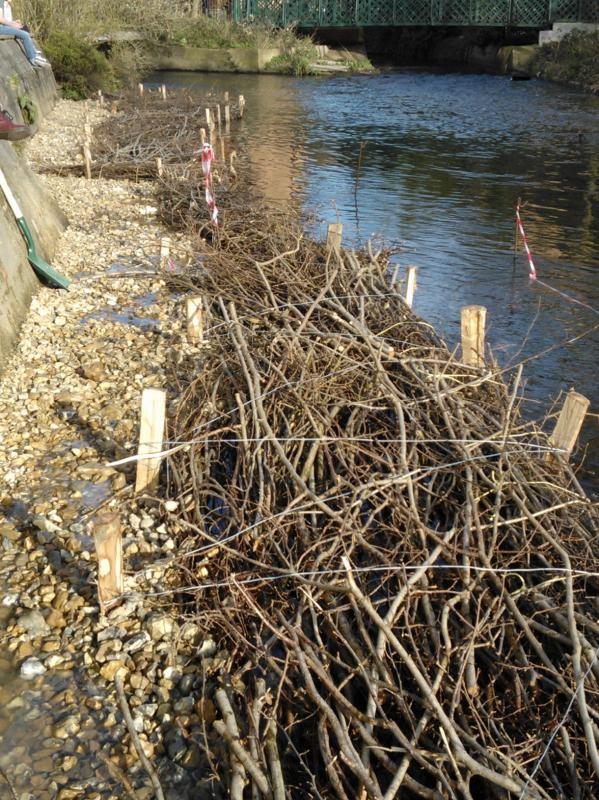 Hogsmill River Habitat Works/Wandle Trust- Volunteers Wp_00025