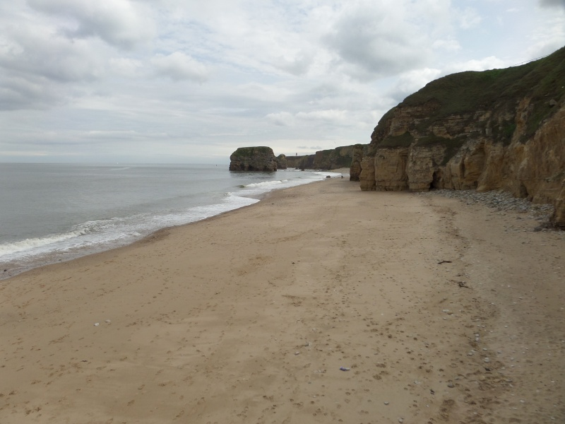 A walk along Marsden Bay getting used to my camera Sam_0116