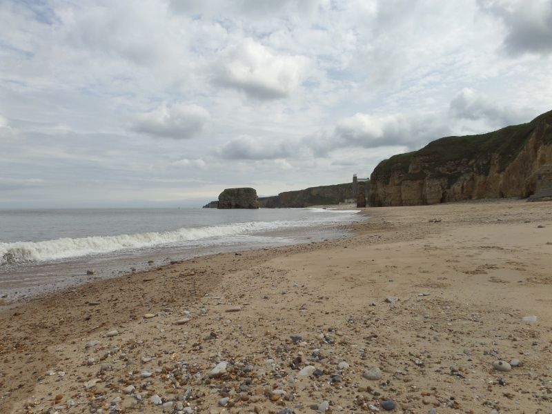 A walk along Marsden Bay getting used to my camera Sam_0123