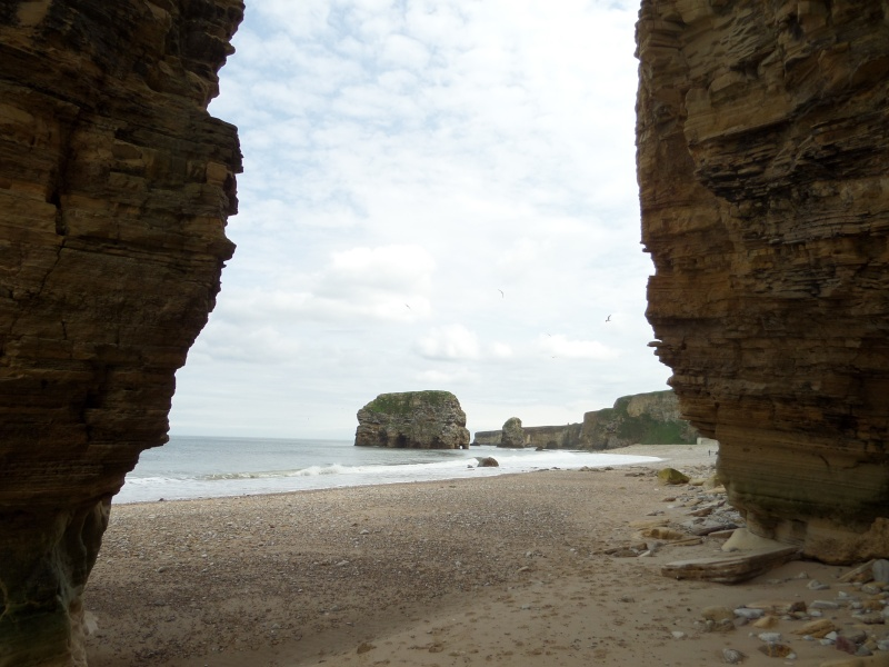 A walk along Marsden Bay getting used to my camera Sam_0127
