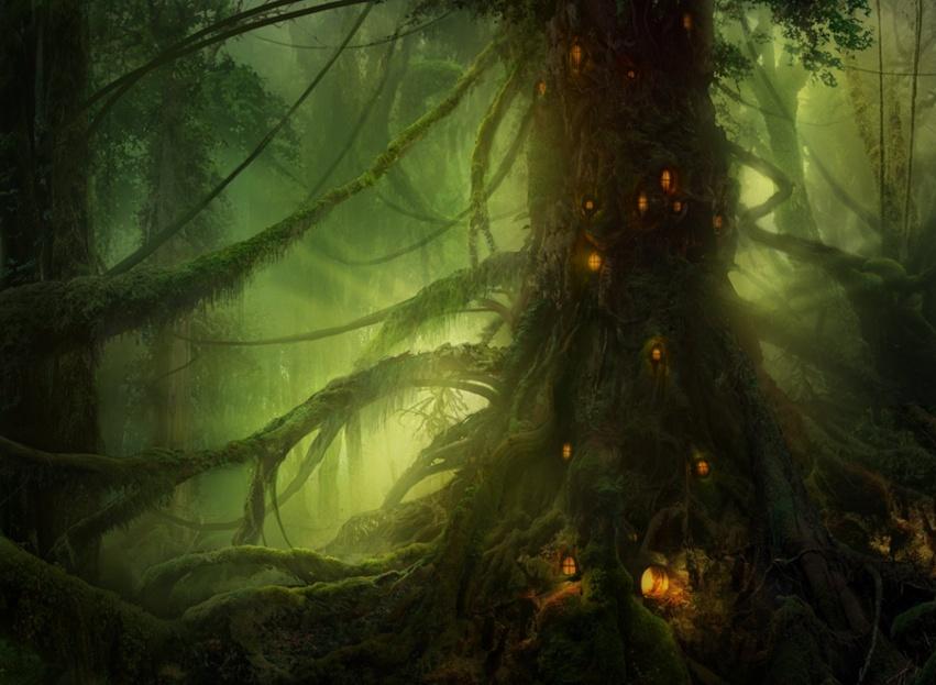 Forêt enchantée de votre Fée Mary, une coccinelle égarée... Monde-11