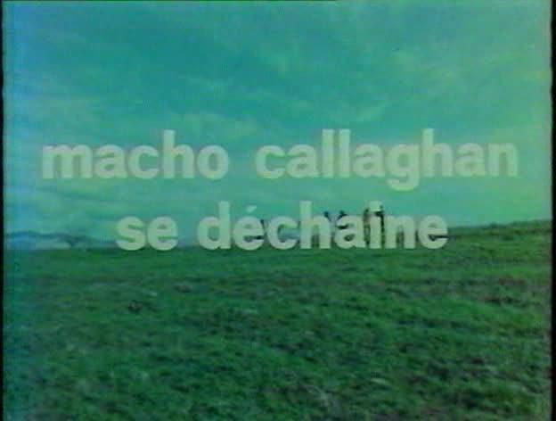 Macho Callaghan se déchaîne. Adios Companeros. Giù la testa... hombre. 1971. Demofilo Fidani. Vlcsn141
