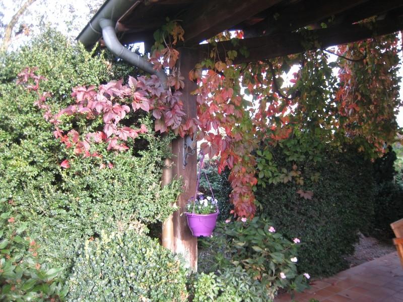 couleur d'automne  Img_1715