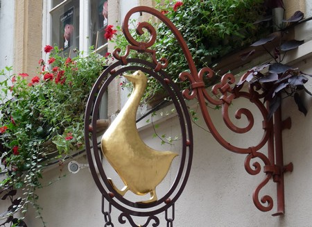 l'oie d'Alsace Fin11