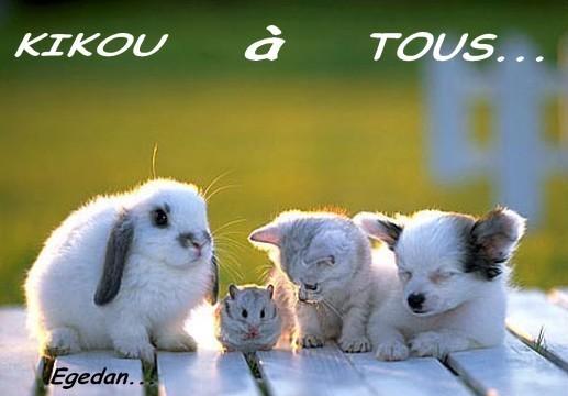 Salut les amis !!!!  - Page 3 69b71210