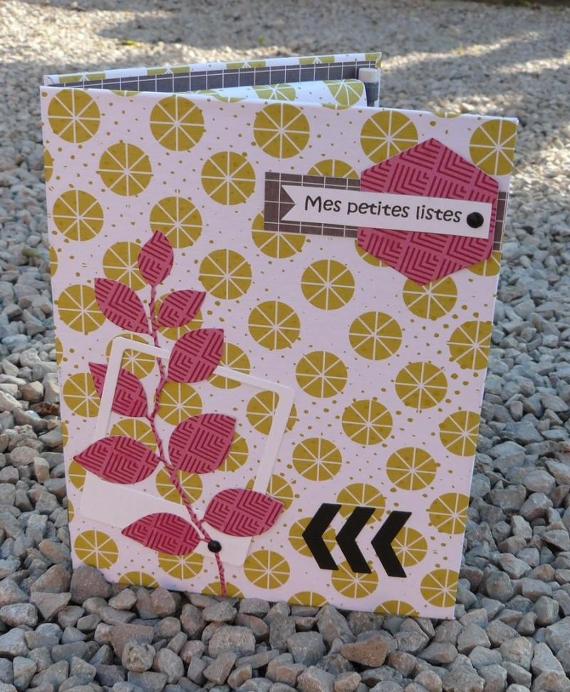 "Challenge ""Petits carnets""-gagnante Nanie bravo - Page 2 P1110711"