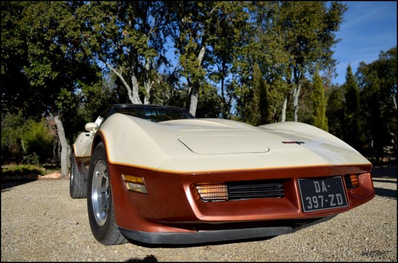 CORVETTE C3 1981 bi-ton......  Dsc_0148