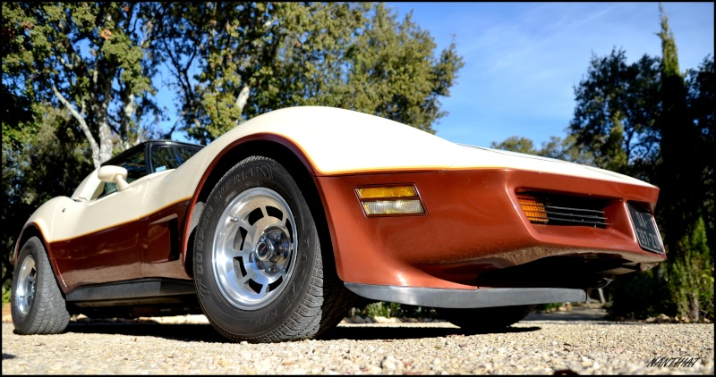 CORVETTE C3 1981 bi-ton......  Dsc_0149