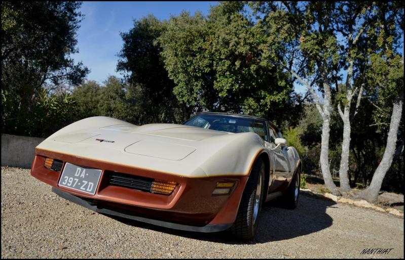 CORVETTE C3 1981 bi-ton......  Dsc_0152