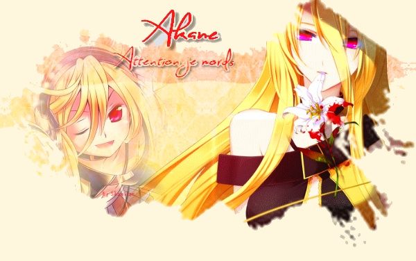 Fiche : Agence Cooki Akane_11