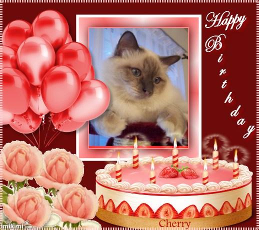 Bon anniversaire Cherry !  1sxw9-39