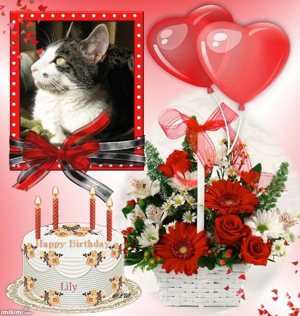 Joyeux anniversaire ma petite Lily chérie ! 1sxw9-48