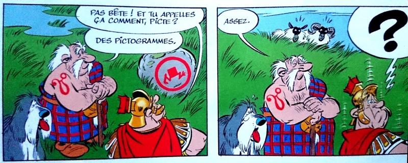 """""""Astérix chez les Pictes"""" tome 35 (24 octobre 2013) - Page 14 Dsc_0011"""
