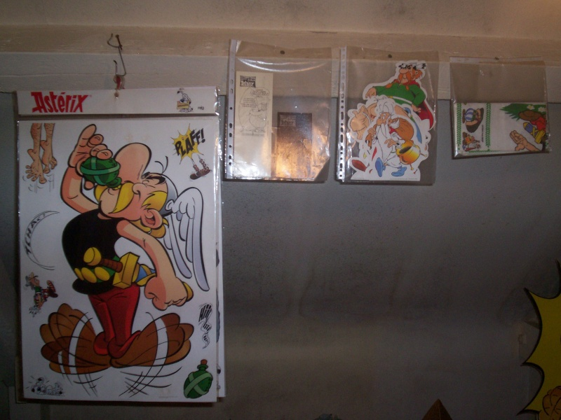 collection asterix de mas08ter - Page 2 100_7737